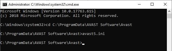 avast_folder