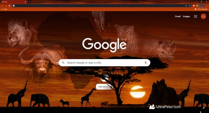 African_Sunset